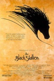 The Black Stallion Malayalam Subtitle