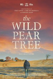 The Wild Pear Tree Malayalam Subtitle